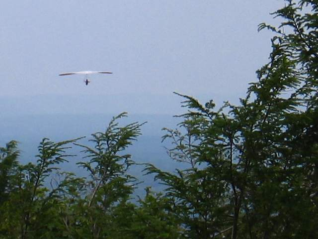 Hang glider sailing just off the top of Avon Mountain in Simsbury, CT.